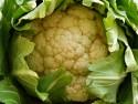 606 Cauliflower