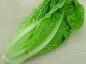 606 Lettuce